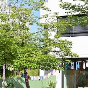 Geschützt: Kindergarten Birmensdorferstrasse M.Hofmann