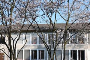 Klasse K. Bürgi, Schulhaus Brunnenmoos, Kilchberg